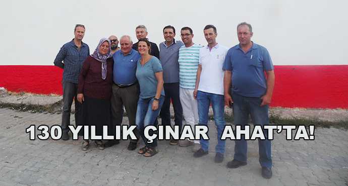 130 Yıllık Çınar  Ahat'ta!