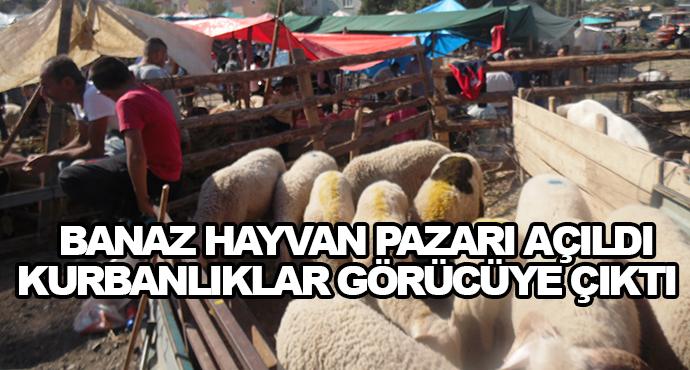 Banaz Hayvan Pazarı Açıldı-Kurbanlıklar Görücüye Çıktı