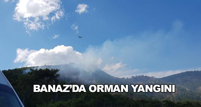 Banaz'da Orman Yangını