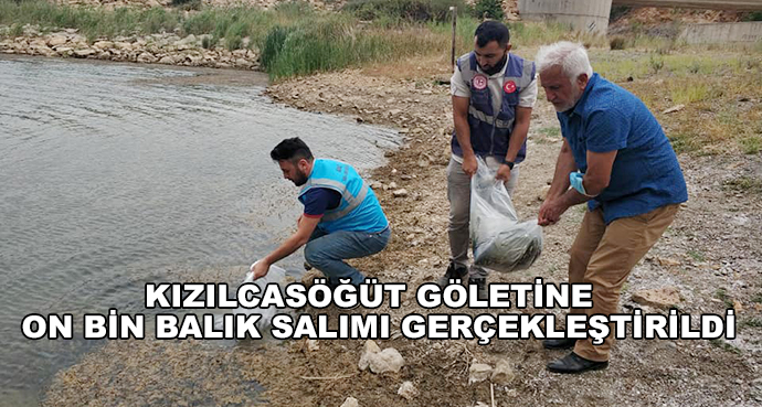 Kızılcasöğüt Göletine  On Bin Balık Salımı Gerçekleştirildi