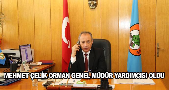 Mehmet Çelik Orman Genel Müdür Yardımcısı Oldu