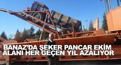 Banaz'da Şeker Pancar Ekim Alanı Her Geçen Yıl Azalıyor