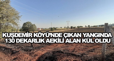 Kuşdemir Köyü'nde Çıkan Yangında 130 Dekarlık Aekili Alan Kül Oldu